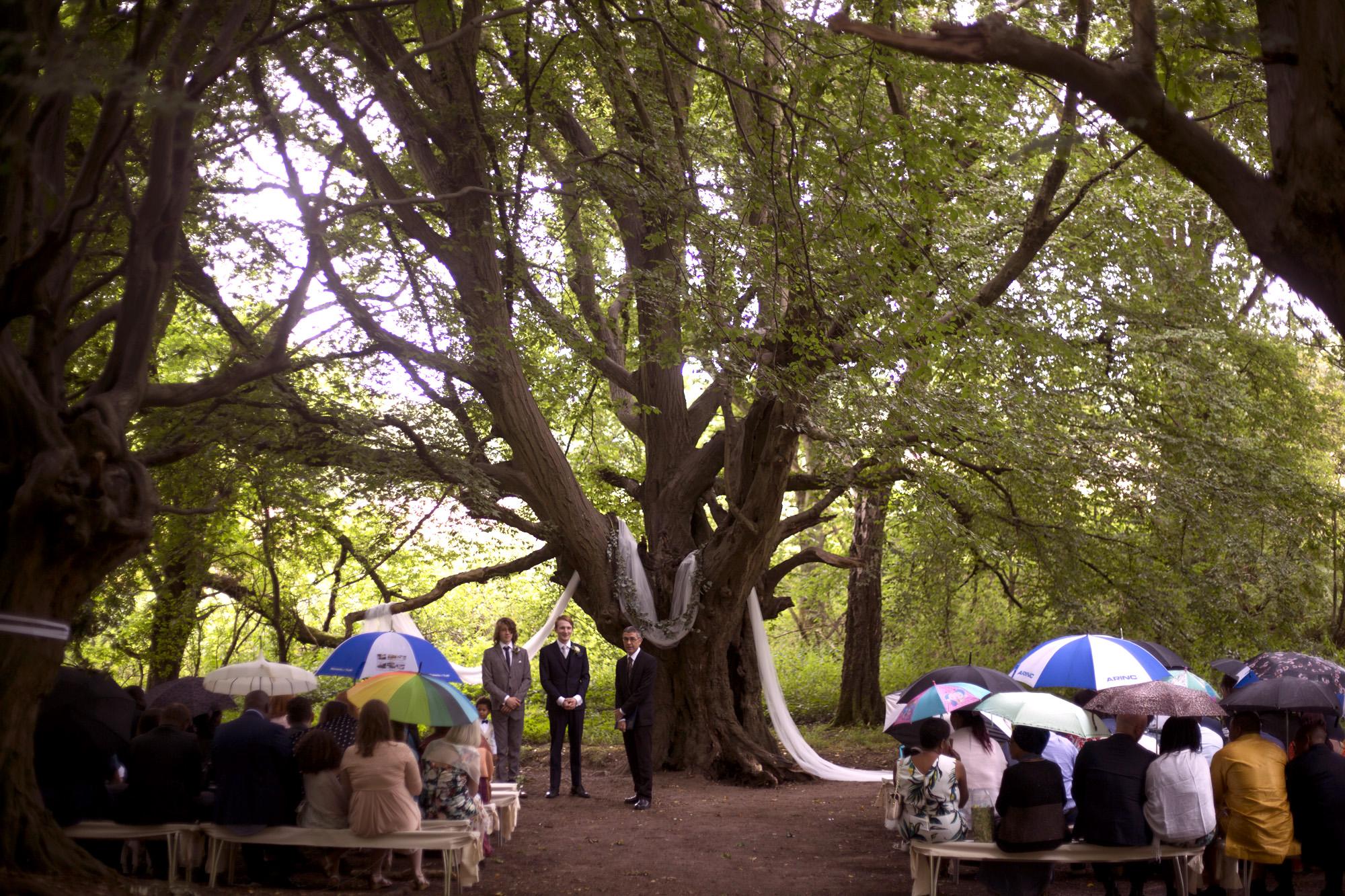 Woodland outdoor ceremony in front of  huge oak tree forest wedding photographer UK