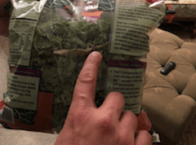 Woman finds a lizard in her bag of greens