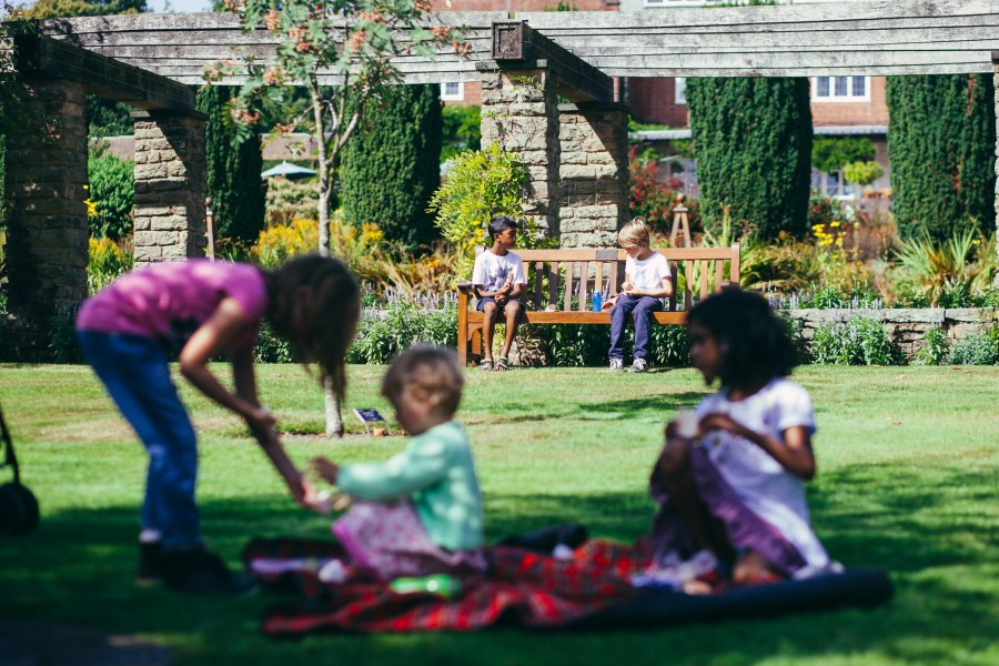 Group of children playing in the botanical garden