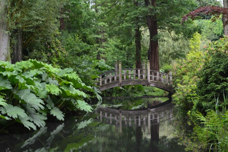 Japanese Bridge and Woodland Walk, photograph by Malcolm Mollart