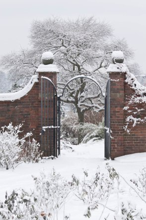 Snow, The Walled Garden, Photograph by Jenny Lilly, Winterbourne House and Garden, Digging for Dirt