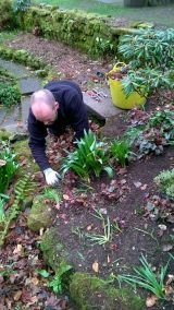 Weeding a border before mulching, Winterbourne House and Garden, Digging for Dirt