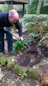 Mulching, Winterbourne House and Garden, Digging for Dirt