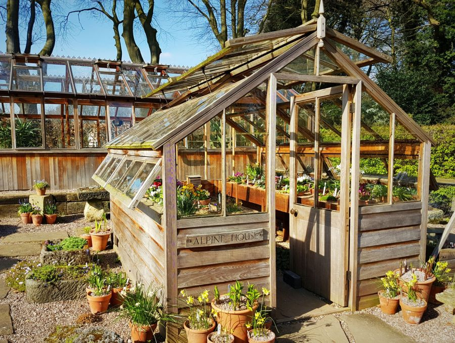 The Alpine House, photograph by Chris Howell, Winterbourne House and Garden, Digging for Dirt