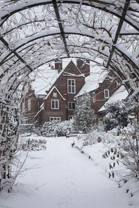 The Nut-Walk in snow, December 2010, photograph by Jenny Lilly, Winterbourne House and Garden, Digging for Dirt