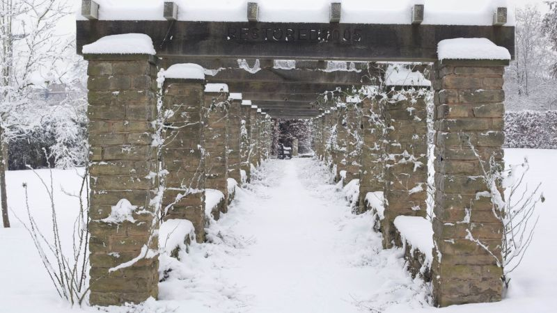 Pergola in snow, December 2010, photograph by Jenny Lilly, Winterbourne House and Garden, Digging for Dirt