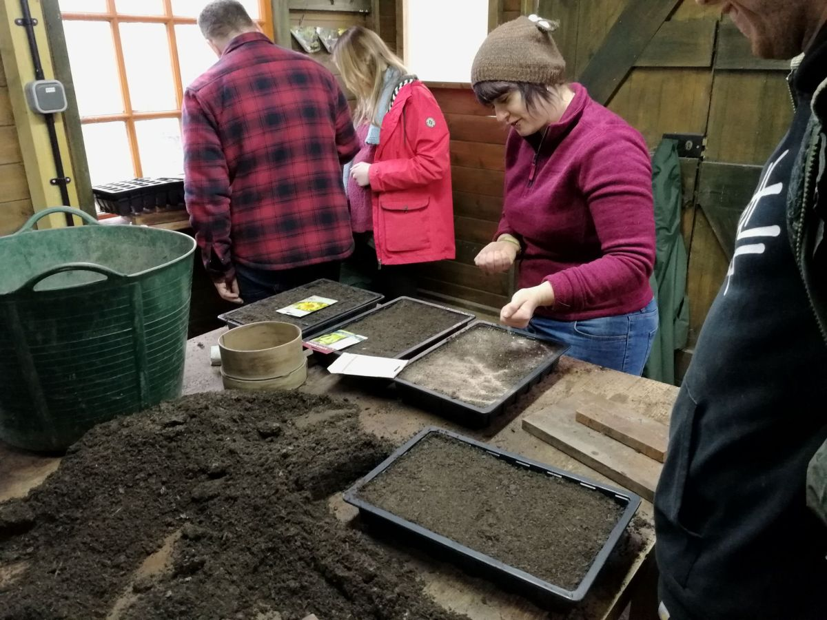 Seed sowing in the Potting Shed, RHS Level 2 Certificate in Practical Horticulture, photograph by David Billings, Winterbourne House and Garden, Digging for Dirt, Lolly Gautier-Ollerenshaw