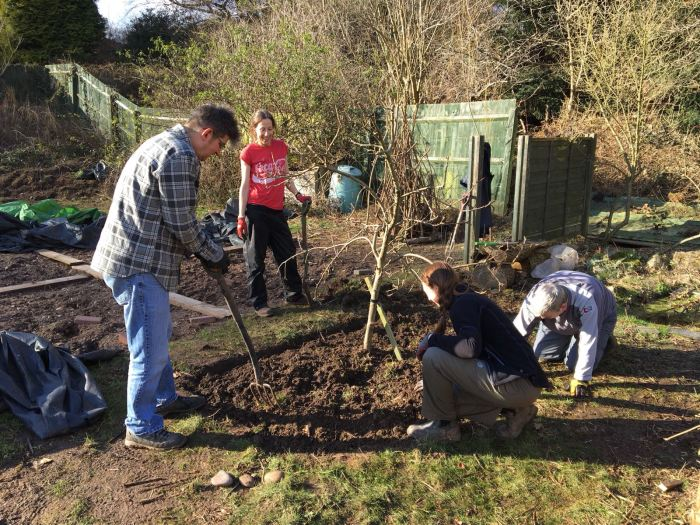 Clearing around fruit trees in the Teaching Garden, RHS Level 2 Certificate in Practical Horticulture, photograph by David Billings, Winterbourne House and Garden, Digging for Dirt, Lolly Gautier-Ollerenshaw