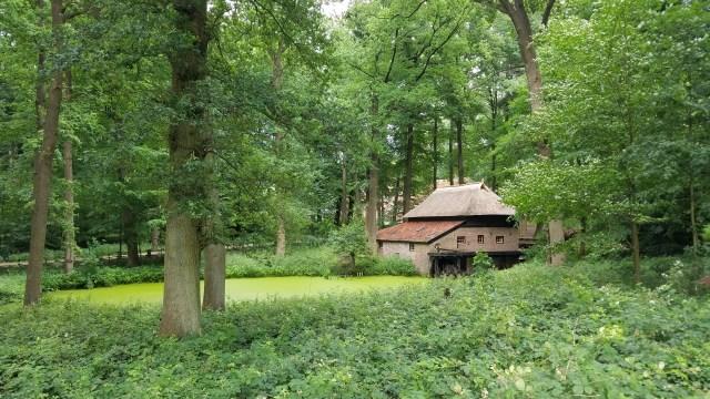 Mill.