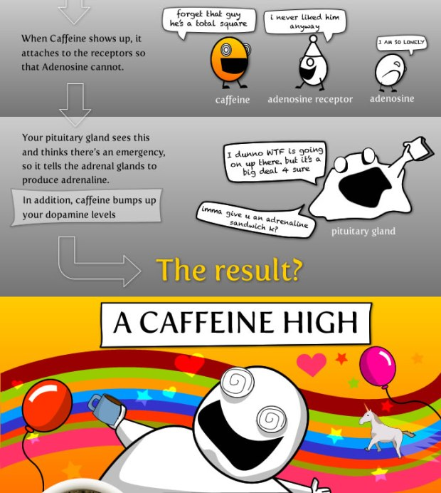Schema molto scientifico sul meccanismo di rilascio dopaminico