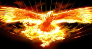 L'uccello che vola più in alto di tutti
