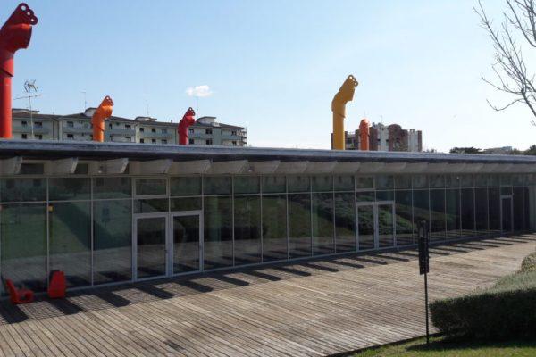 """I """"Pomeriggi del CEA"""" al Centro Culturale Le Creste proseguono con un laboratorio dedicato a Charles Darwin"""