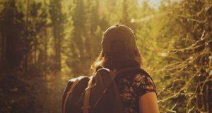 Da Bologna a Firenze attraverso i boschi: la Via degli Dei