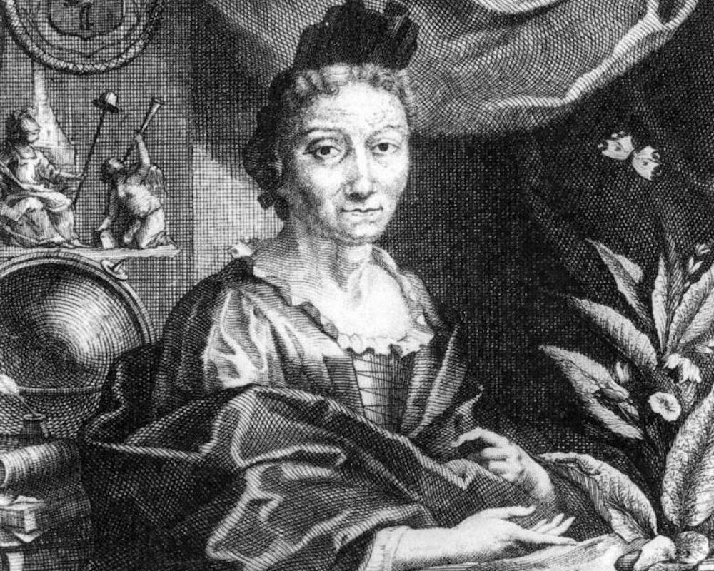 #attiviste – Maria Sibylla Merian