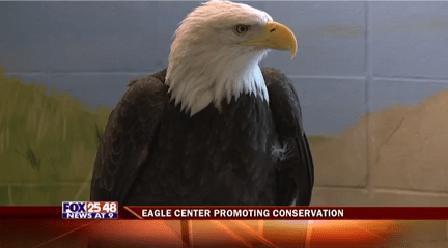 National Eagle Center 2-20160231220019_1459481378348.png