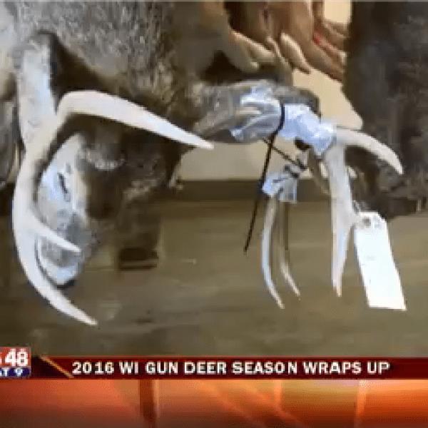 2016 Wisconsin Deer Season Wraps Up_1480303681363.png