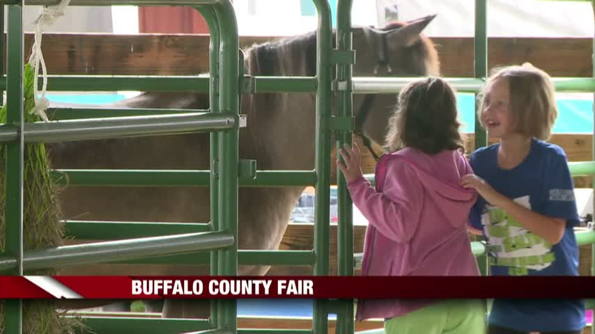 County-By-County- The Buffalo County Fair In Mondovi_12587793