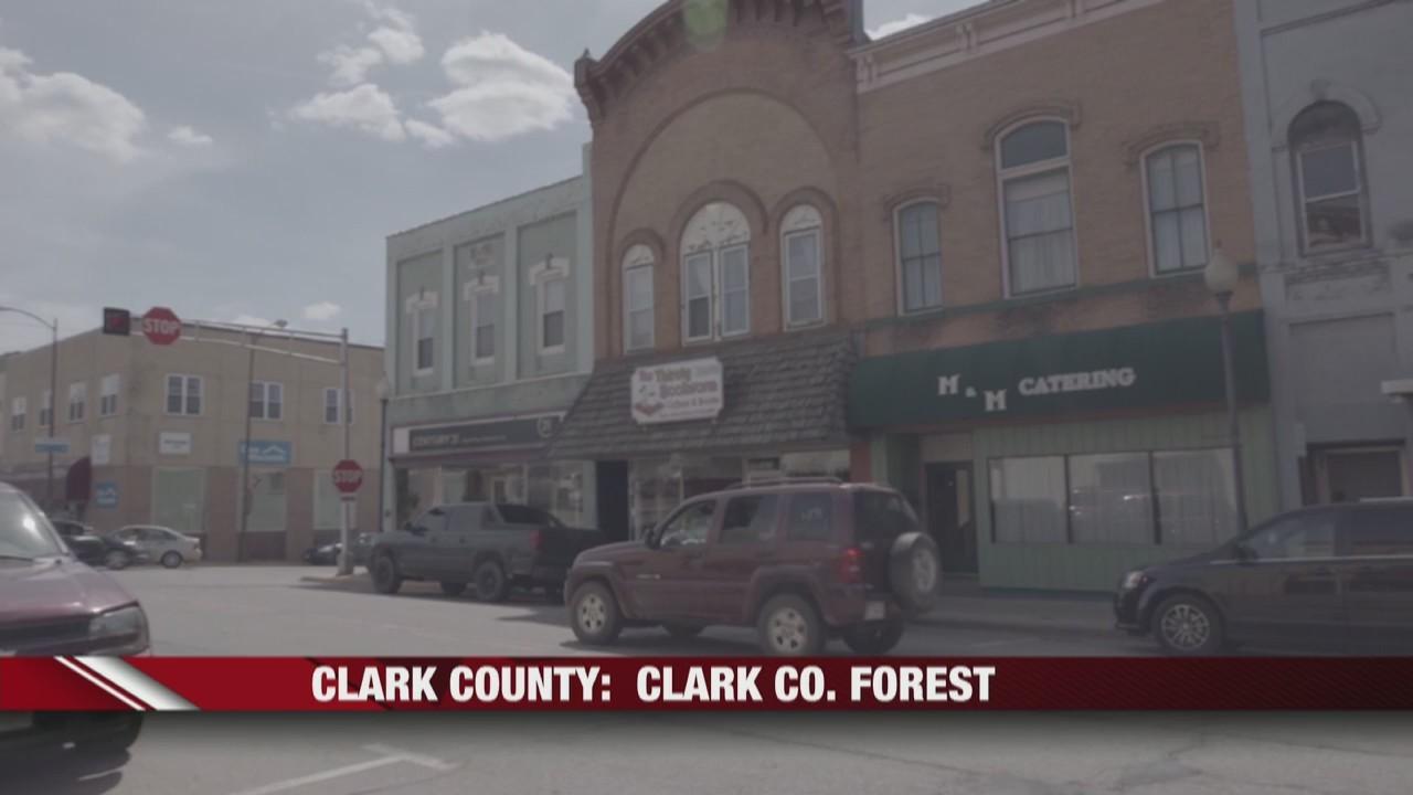 Clark_county__Clark_co__forest_0_20190601021931