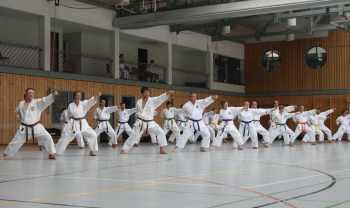 Karate-Lehrgang