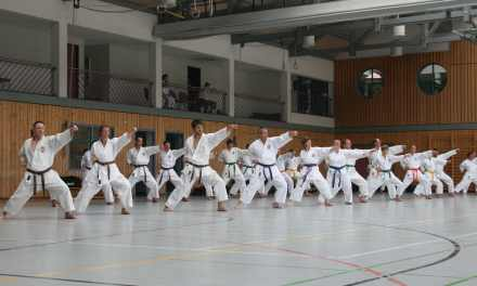 Karate-Lehrgang: Rhythmus, Kraft und Kampfgeist