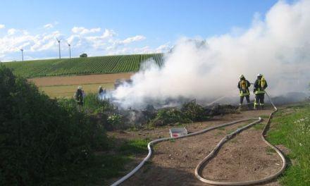 Wald- und Flächenbrände einfach vermeiden