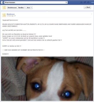 Hier der Facebook-Eintrag zu dem Vorfall.