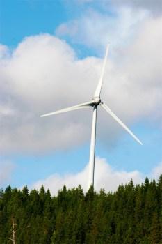 Windräder in Rheinhessen?