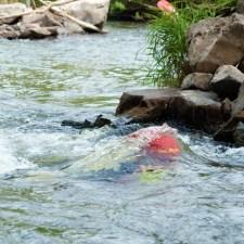 Wird der Schwimmer unter Wasser gezogen, löst er den Panikverschlussm seine Weste und kommt vom Seil frei. (Bild: Andreas Fuhr)