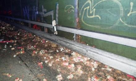 Hundefutter verteilt sich nach LKW-Unfall auf der Autobahn