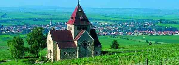 Unser heutiges Rheinhessen-Wisser-Quiz dreht sich um das Weinanbaugebiet