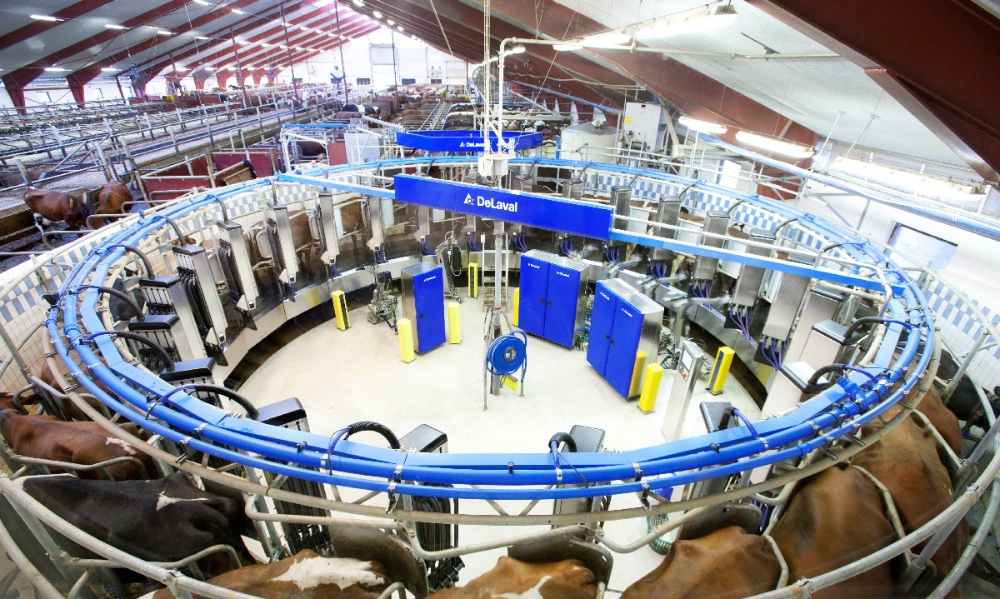 The DeLaval AMR Circular Cow Milker