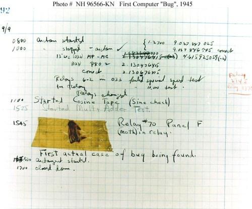 Computer Bug (Public Domain: US Navy)