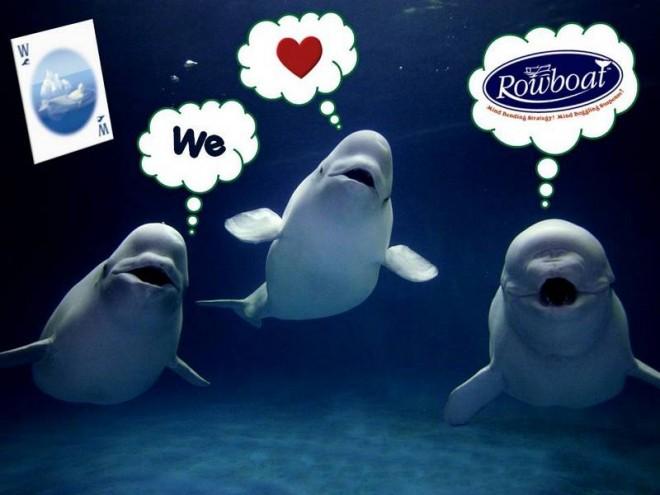 Even belugas love Rowboat. Image: Moosetache Games