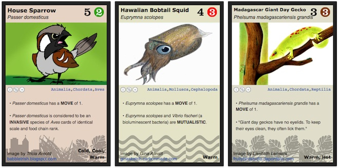 A few Phylo animal cards. Image: Phylogame.org