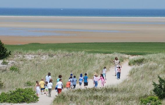 Cape Cod Bay Walk