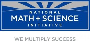 NSMI logo