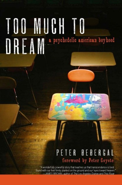 Peter Bebergal's TOO MUCH TO DREAM LAST NIGHT (Image: Soft Skull Press)