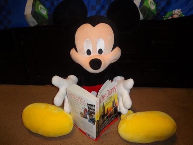It's okay Mickey. We still love you. / Image: Dakster Sullivan