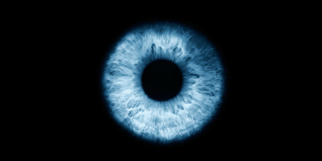 Iris Scans Come to Nursing Homes. Next Stop, Your Phone