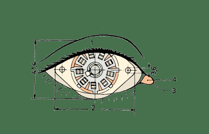 FSB-ALGO_Spot_3_test1.png