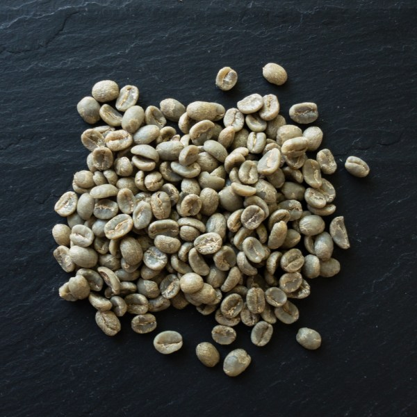 Green coffee beans on slate from Wired Possum Coffee