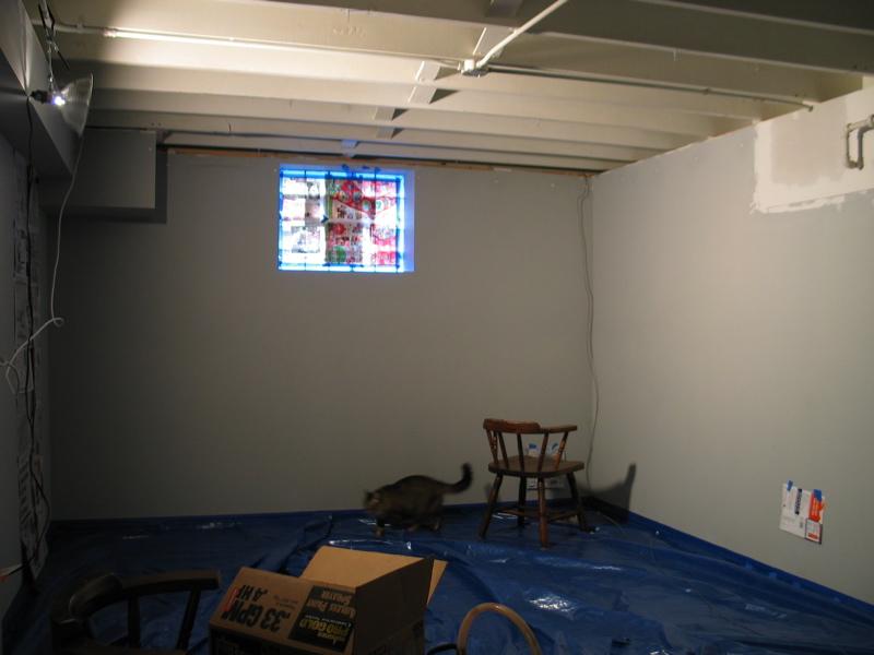 Spray Paint Bat Ceiling Alternative Basement Ceiling