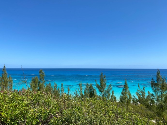 Happy Mother's Day from the south shore of #Bermuda!