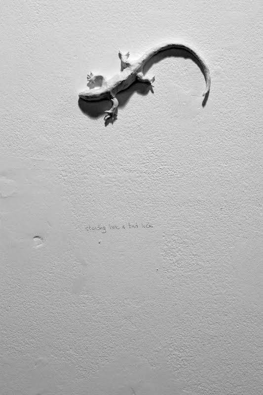 The Lizards Within Us (2015) / Foto cortesía de la artista
