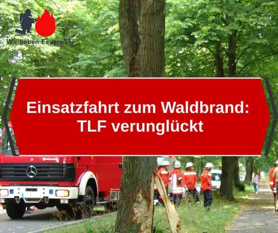 Einsatzfahrt zum Waldbrand: TLF verunglückt