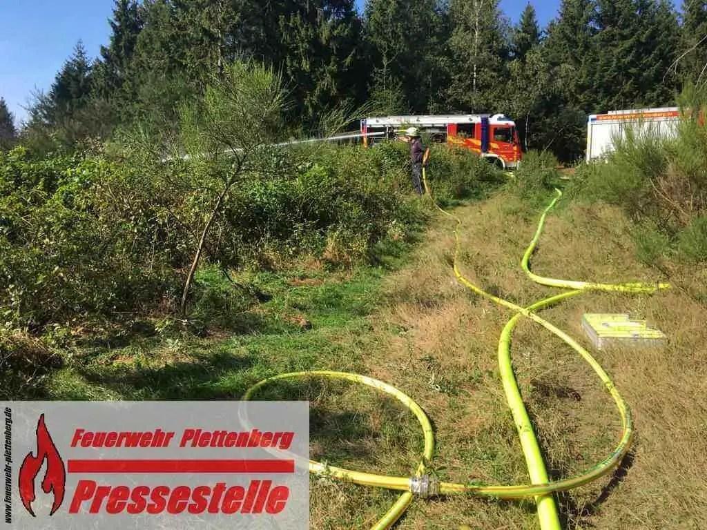 Bei Waldbrand: Feuerwehr findet Leiche