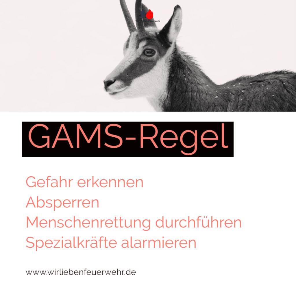 GAMS-Regel für Erstmaßnahmen im ABC-Einsatz