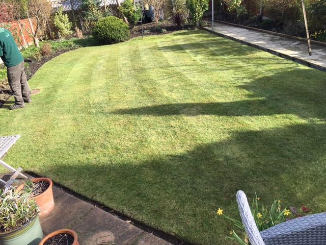 Garden set15