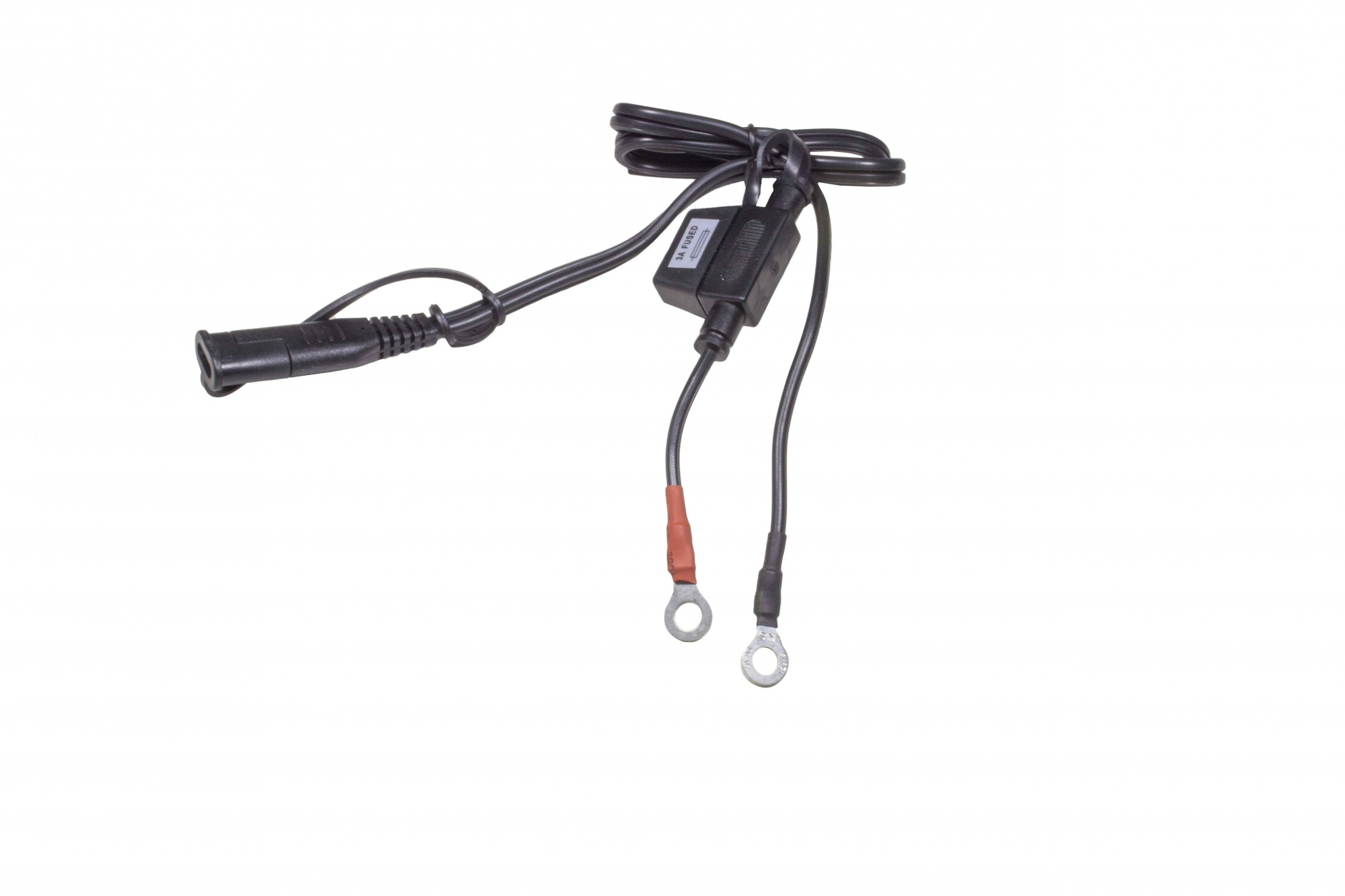 Harness With Ring Terminals