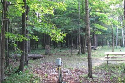 Fish Creek Campground1